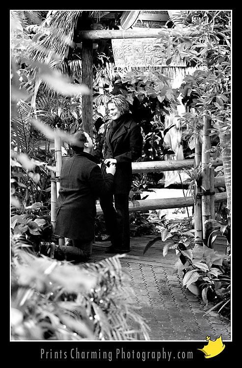 AnthonyRachel_8122-789425 Proposal / Hidden Camera Session: Anthony & Rachel Proposals Engagements