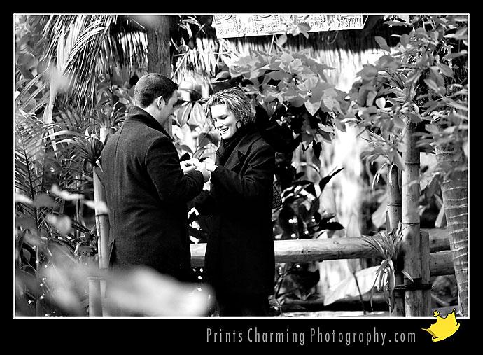 AnthonyRachel_8138-751374 Proposal / Hidden Camera Session: Anthony & Rachel Proposals Engagements