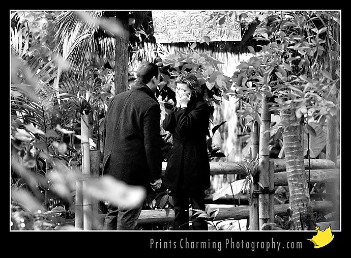 AnthonyRachel_8161-719659 Proposal / Hidden Camera Session: Anthony & Rachel Proposals Engagements