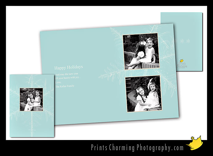 card110-760513 Five New Holiday Card Designs Products