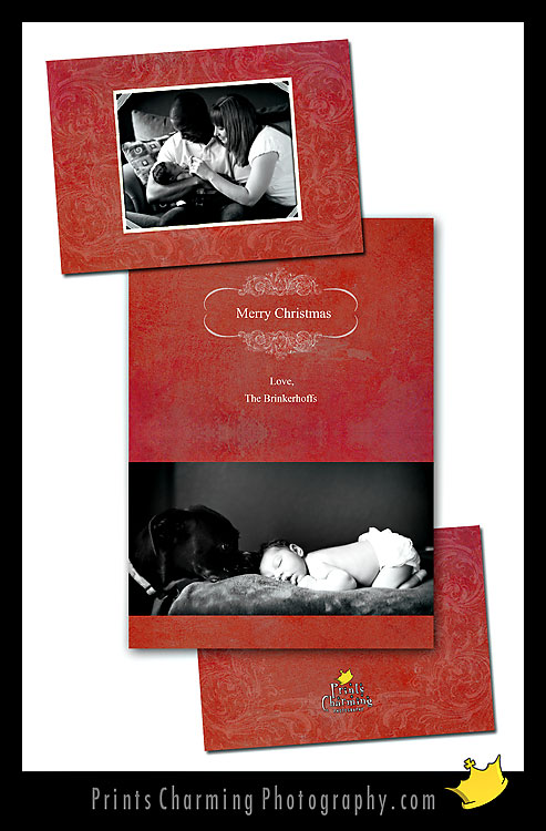 card115-760564 Five New Holiday Card Designs Products